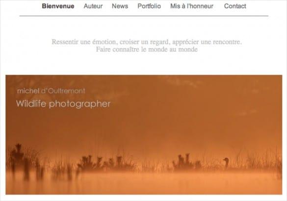site internet michel doultremont 585x410 Concours de photo nature Frisson dHiver : les résultats !