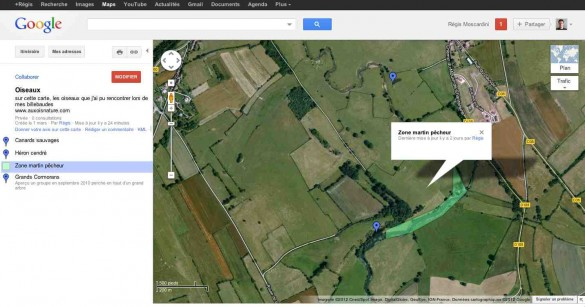 capture ecran google maps carte oiseau