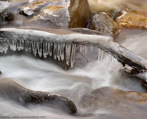 eau filé glace