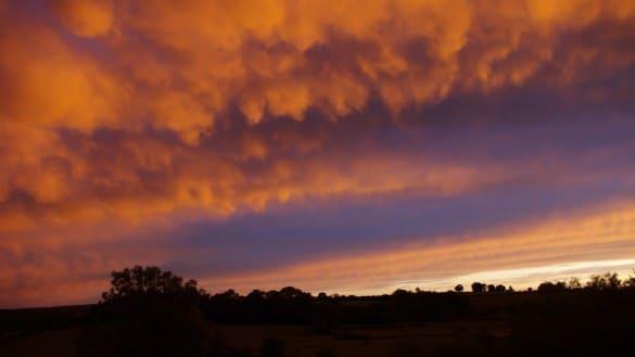 ciel nuageux 1 585x329 Comment photographier les animaux sauvages dans leur environnement