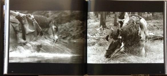 cheval vapeur 2 585x268 Réaliser un reportage photo avec le livre Cheval Vapeur