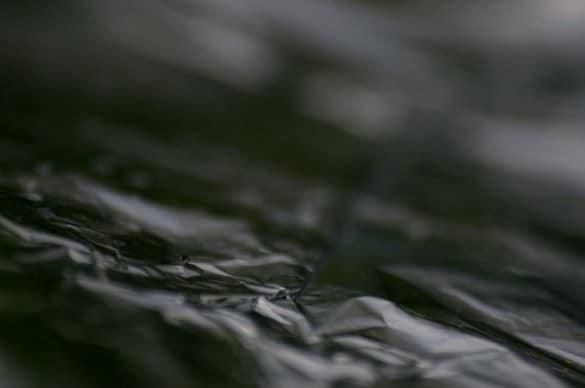 feuille alu 1 1 585x388 5 astuces pour faire de la photographie nature abstraite