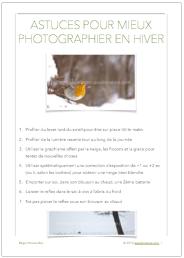 fiche pdf photographier nature animaux hiver 7 astuces pour la photographie animalière en hiver