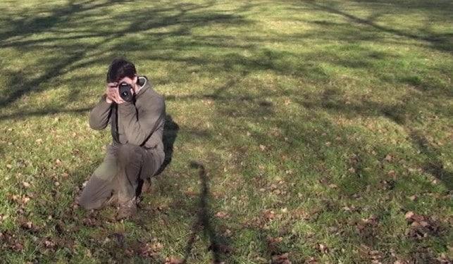 Position Photo Animaliere
