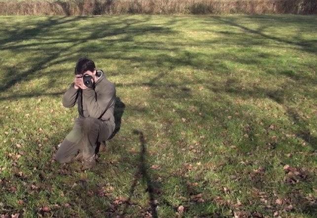 4 postures de photographe animalier à connaitre