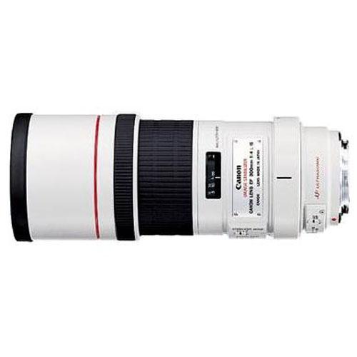 canon ef 300mm f 4 l is usm objektiv 6011 3 Quel est lobjectif idéal pour la photo animalière ?