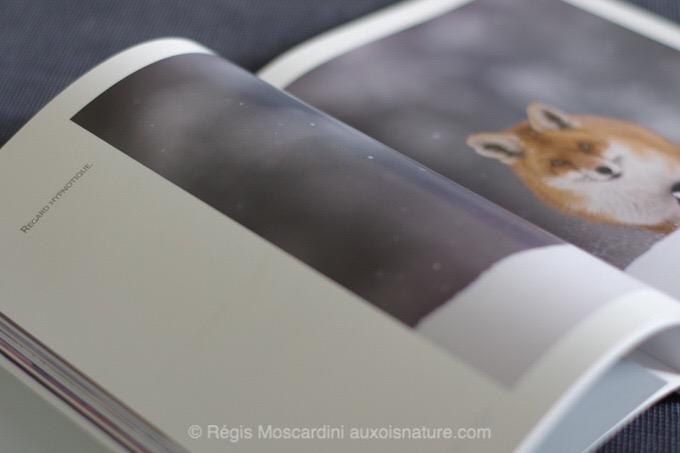 Fabien Gréban sort son premier livre : Blanc Sauvage