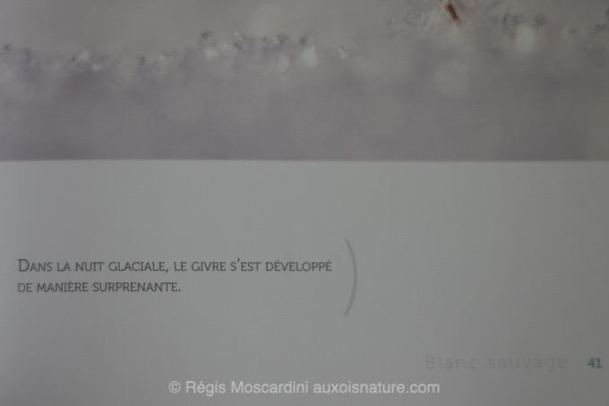 fabien-greban-blanc-sauvage3