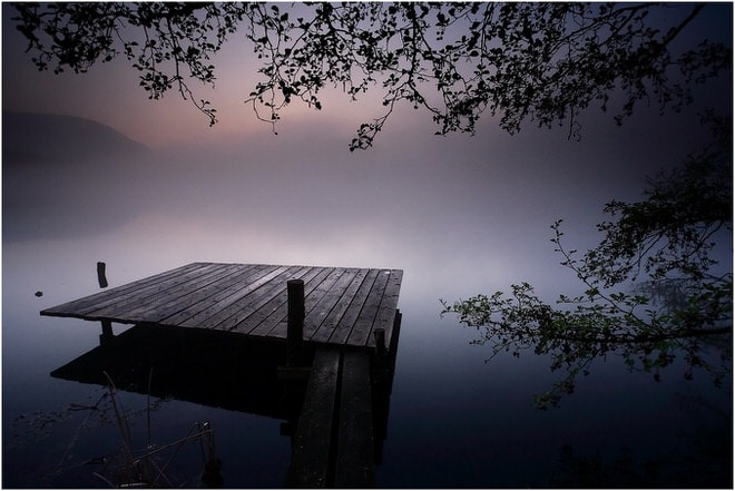 cyrille_grillere_photo_nature7