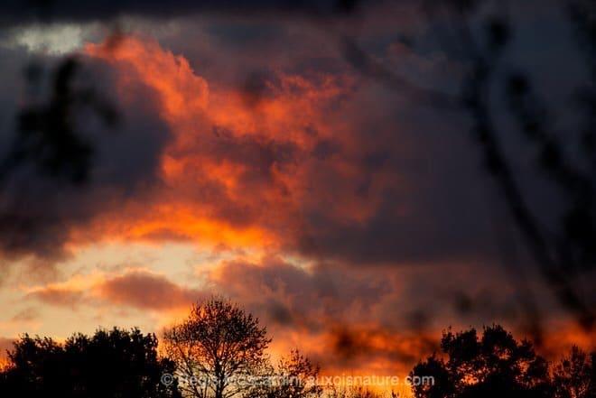 photographie_coucher_de_soleil1