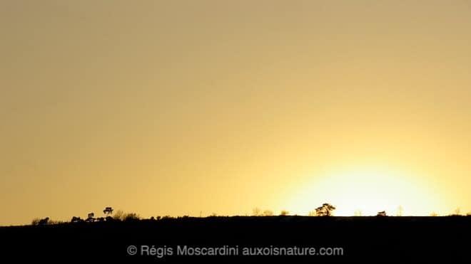 photographie_coucher_de_soleil3