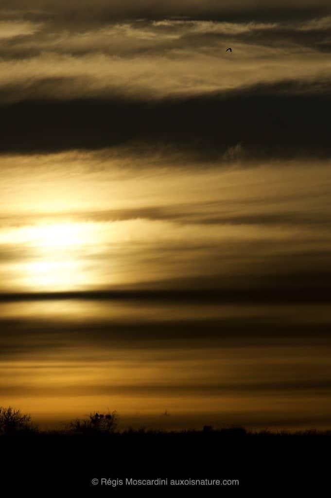 photographie_coucher_de_soleil5
