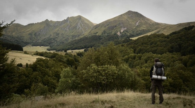 [Podcast #34] Devenir cinéaste animalier avec Clément Couturier