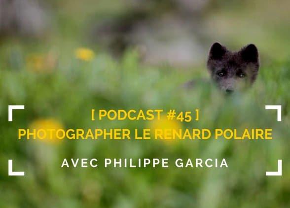 [Podcast #45] Photographier le renard polaire avec Philippe Garcia