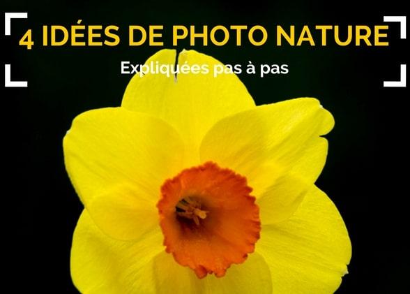 4 idées de photos nature expliquées pas à pas