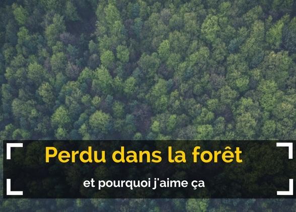 Perdu dans la forêt (et pourquoi j'aime ça)