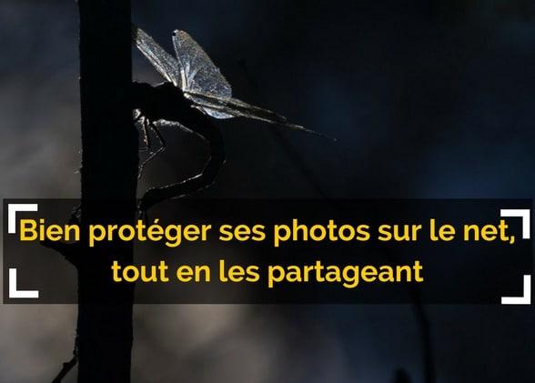 Bien protéger ses photos sur le net, tout en les partageant