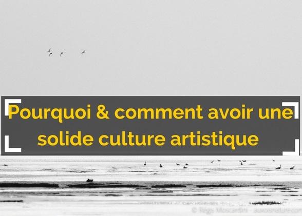 Pourquoi et comment se construire une solide culture artistique