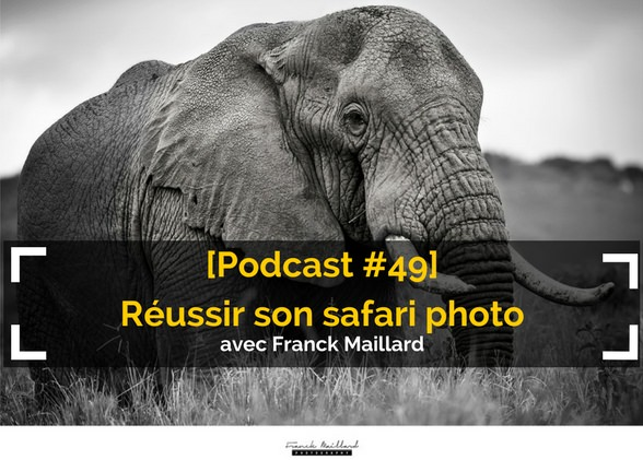 [Podcast #49] Réussir son safari photo avec Franck Maillard