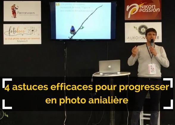 4 astuces simples et efficaces pour progresser en photo animalière