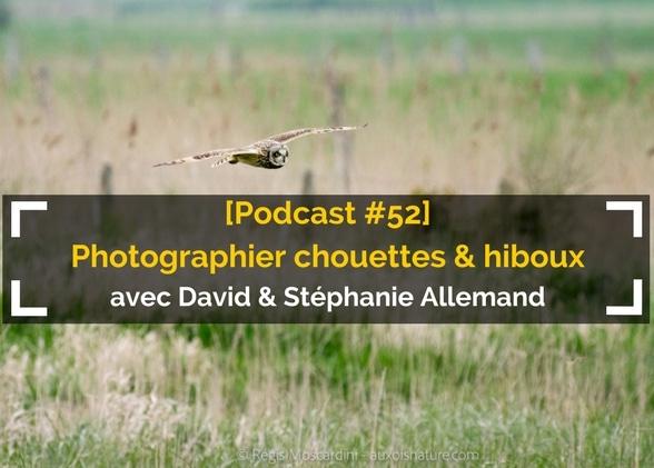[Podcast #52] Photographier chouettes et hiboux avec Stéphanie et David Allemand