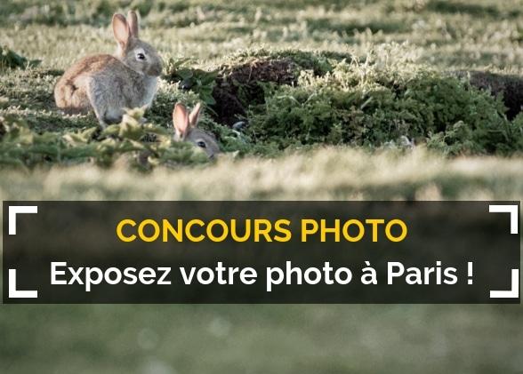 Exposez votre photo à Paris
