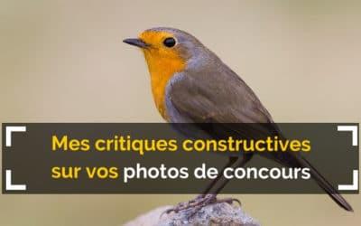 Mes critiques constructives sur vos photos de concours