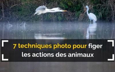 7 techniques photo pour figer les actions