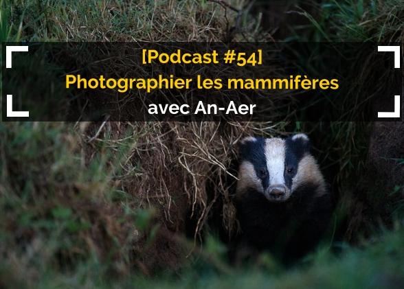 [Podcast #54] Photographier les mammifères avec Vincent Rannou