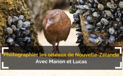 [Podcast #58] Photographier les oiseaux de Nouvelle-Zélande !