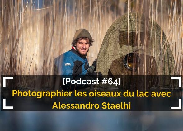 [Podcast #64] Photographier les oiseaux du lac avec Alessandro Staelhi