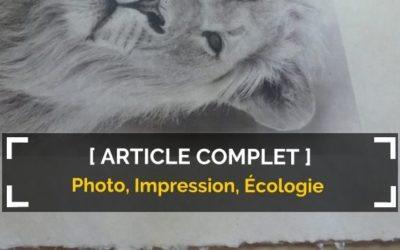 Photographie et impression : l'urgence d'agir